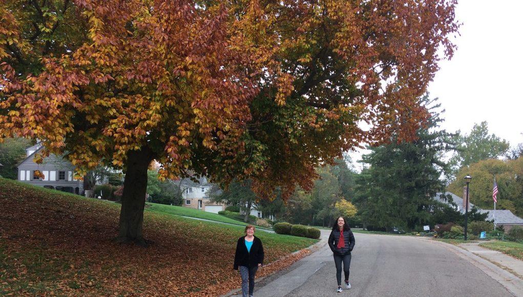 Walter Cordes homes walking tour